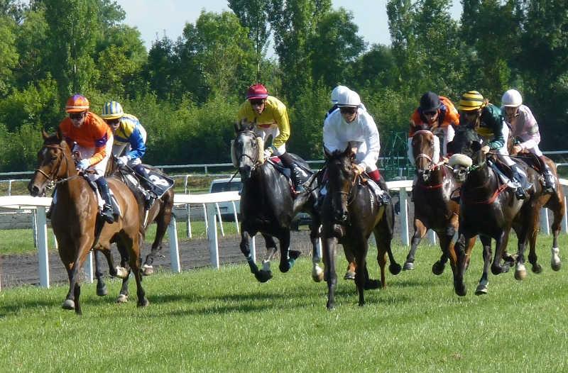 course avec 8 chevaux montés