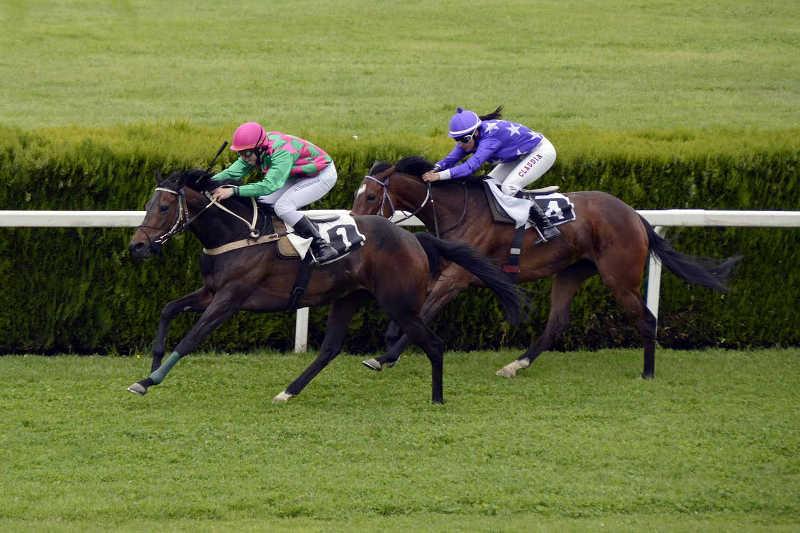 course de chevaux 2 montés